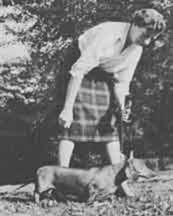 dachshund-hamilton-otto-originaldogforthewizardofoz